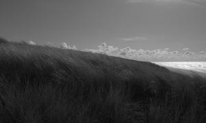10. Kustlijn Zandvoort